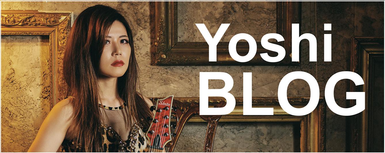 Bnr_yoshi_blog